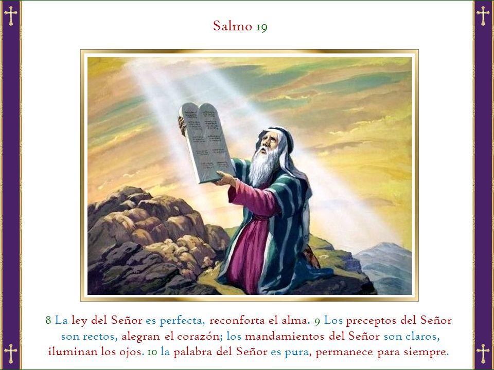 Salmo 19 8 La ley del Señor es perfecta, reconforta el alma. 9 Los preceptos del Señor.