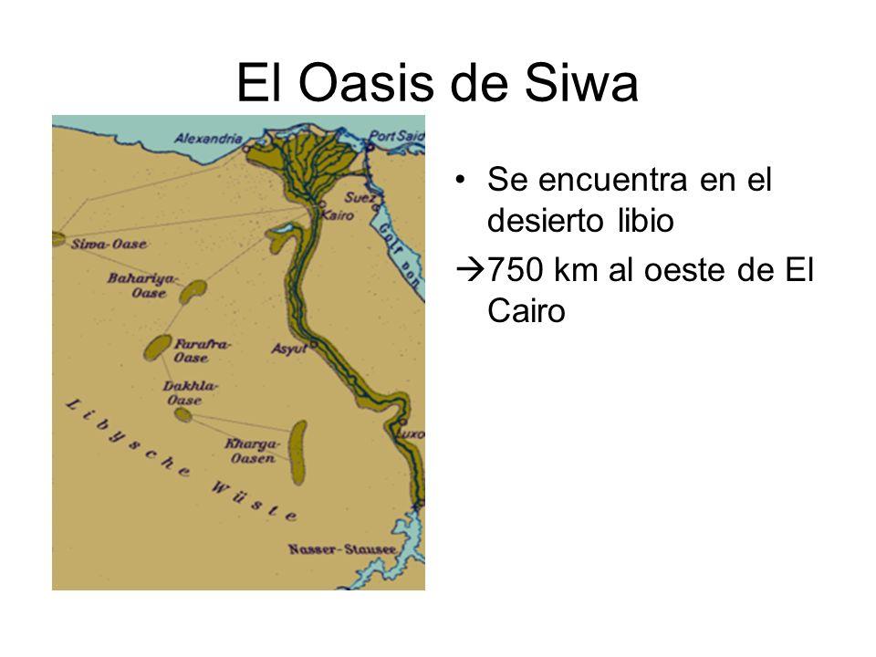 El Oasis de Siwa Se encuentra en el desierto libio