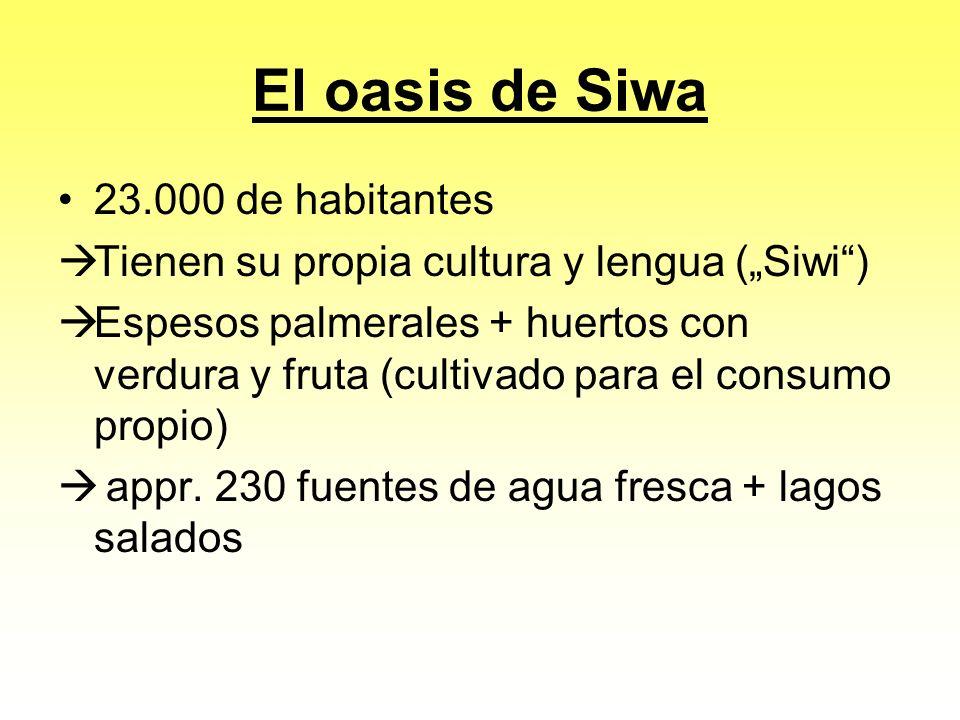 El oasis de Siwa 23.000 de habitantes