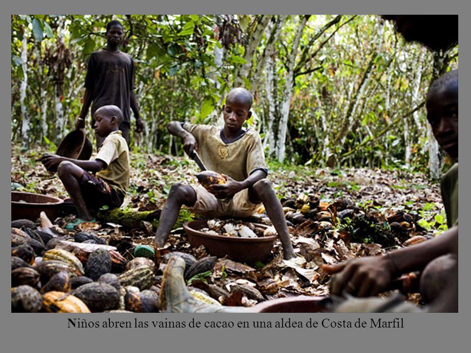 Niños abren las vainas de cacao en una aldea de Costa de Marfil