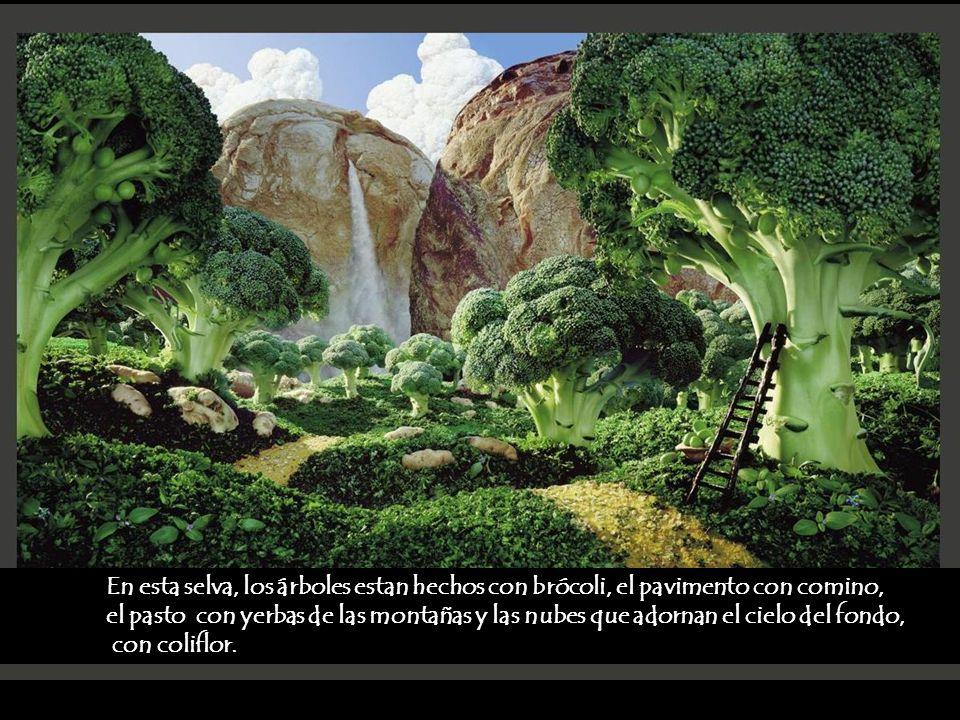 En esta selva, los árboles estan hechos con brócoli, el pavimento con comino,