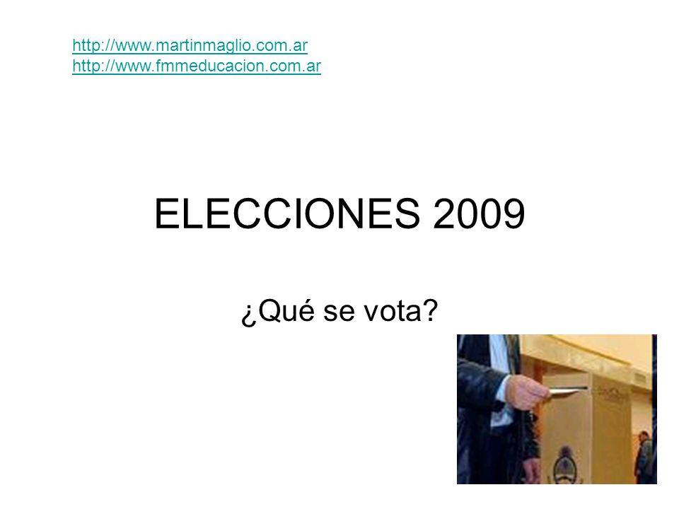 ELECCIONES 2009 ¿Qué se vota http://www.martinmaglio.com.ar