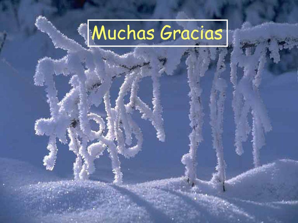 Muchas Gracias Muchas Gracias