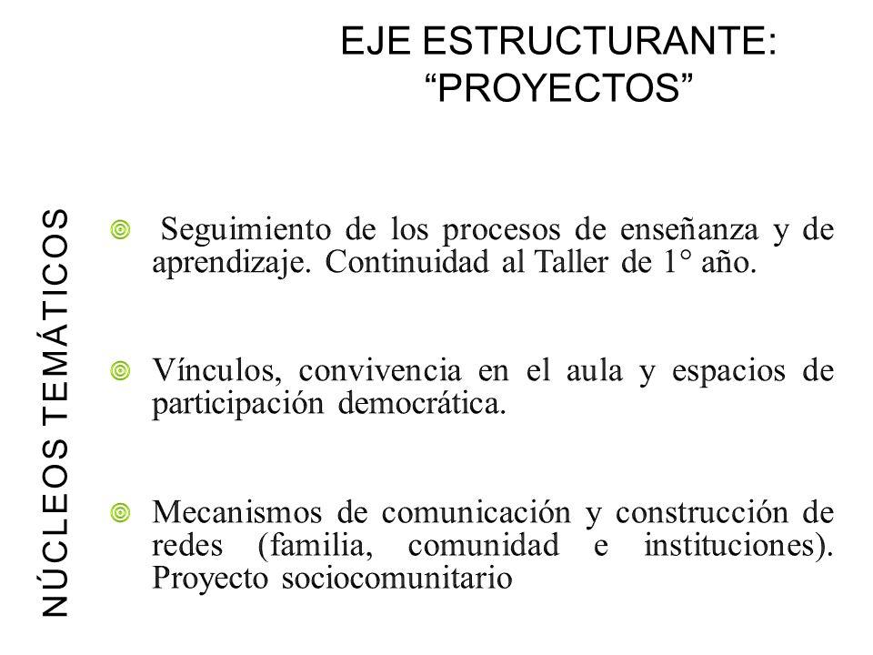 EJE ESTRUCTURANTE: PROYECTOS