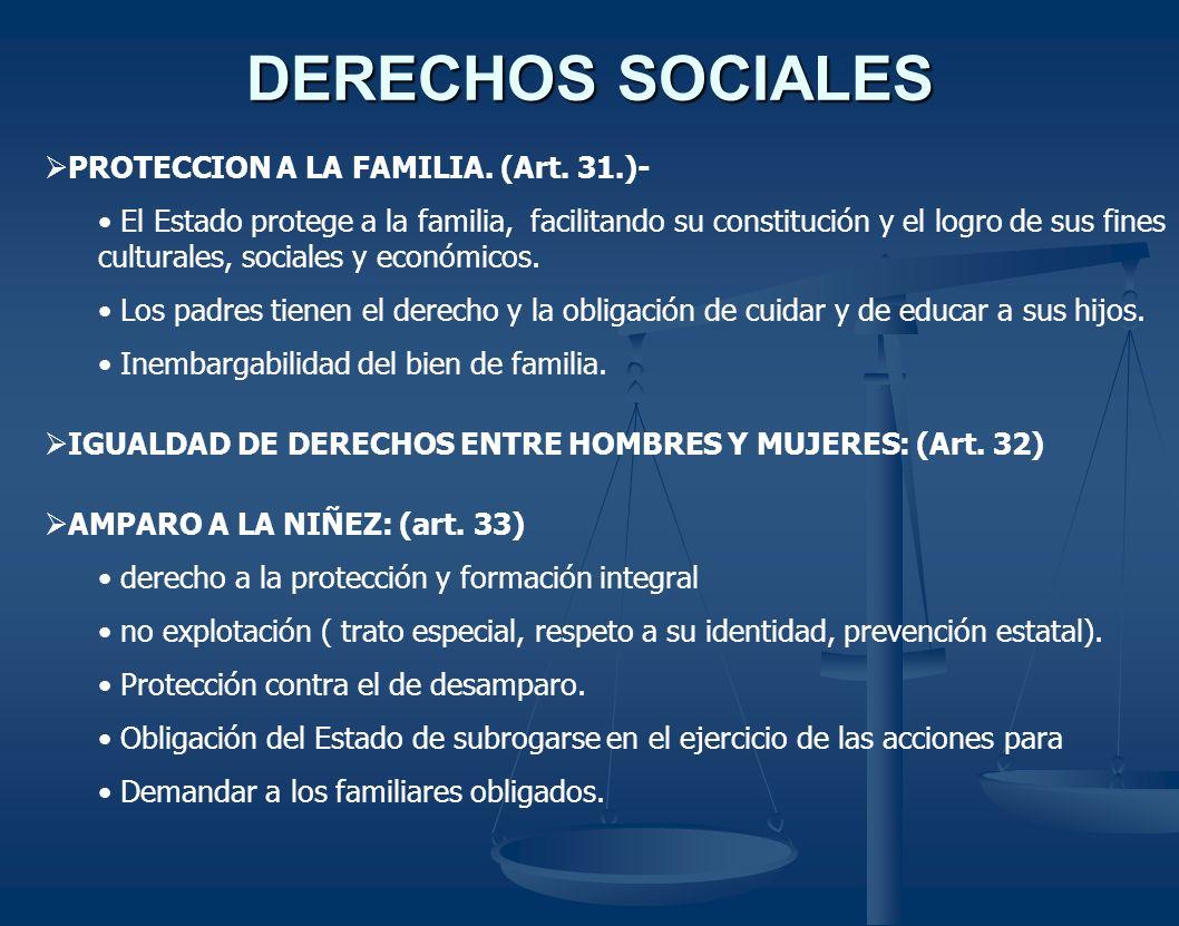 DERECHOS SOCIALES PROTECCION A LA FAMILIA. (Art. 31.)-