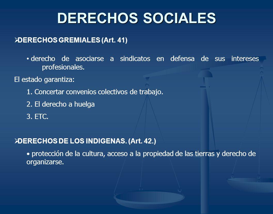 DERECHOS SOCIALES DERECHOS GREMIALES (Art. 41)