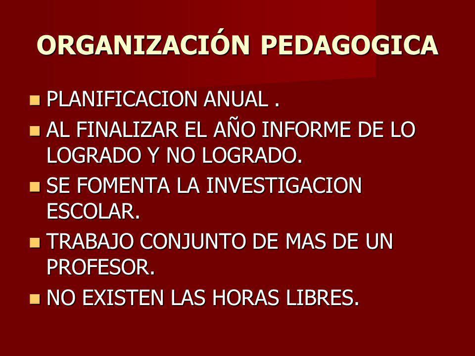 ORGANIZACIÓN PEDAGOGICA