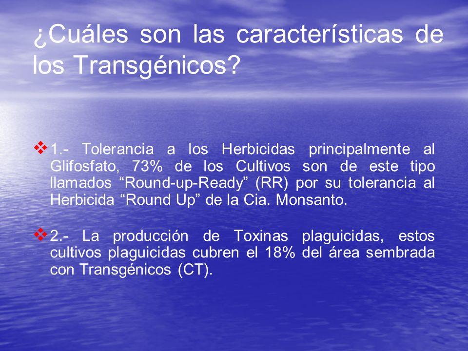 ¿Cuáles son las características de los Transgénicos
