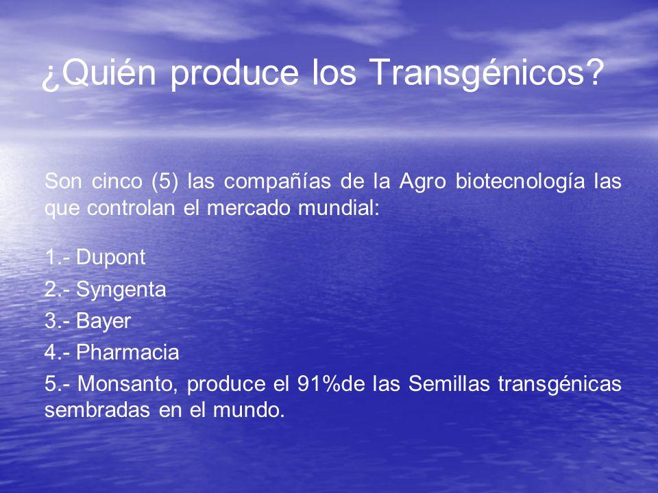 ¿Quién produce los Transgénicos