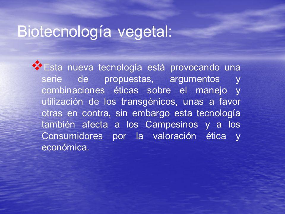Biotecnología vegetal: