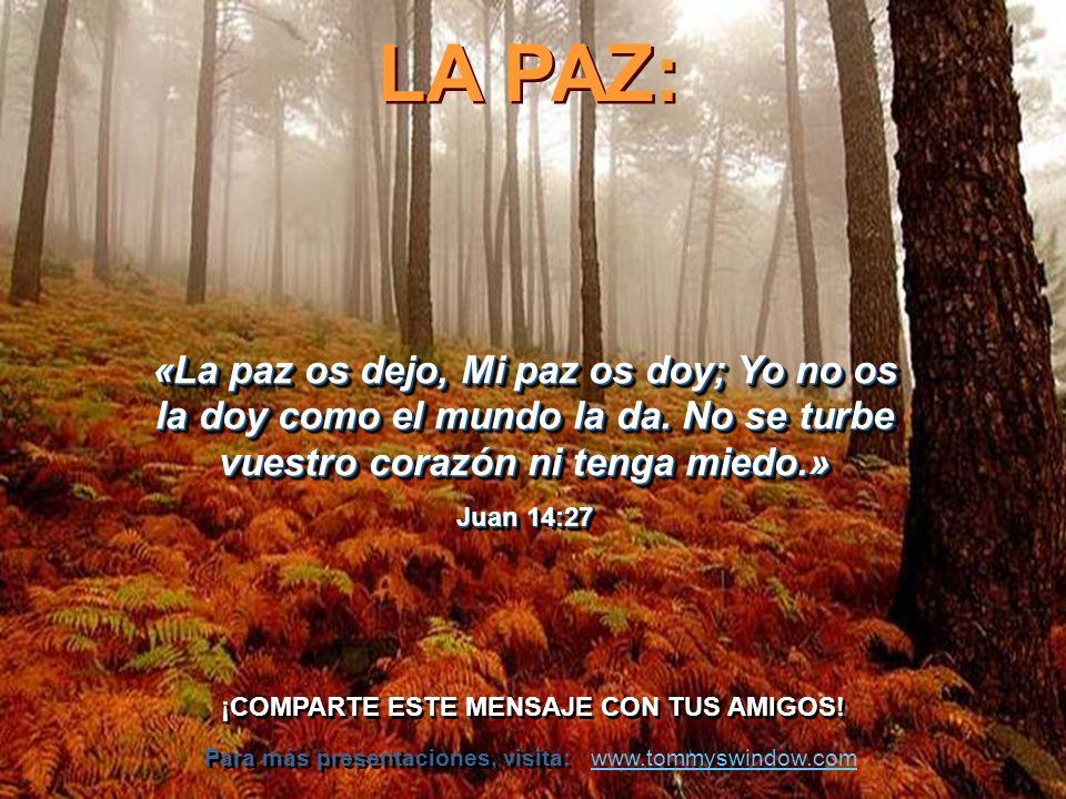 LA PAZ: La paz no se hace en las mesas de negociaciones ni con tratados, sino en los corazones de los hombres.