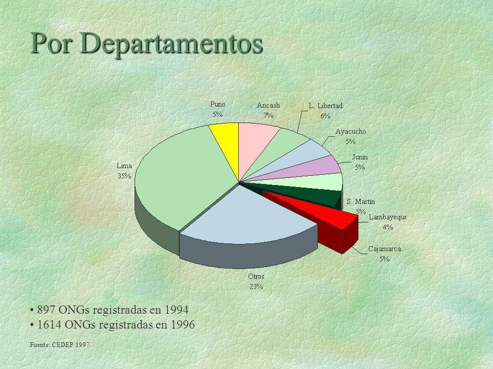 Por Departamentos 897 ONGs registradas en 1994