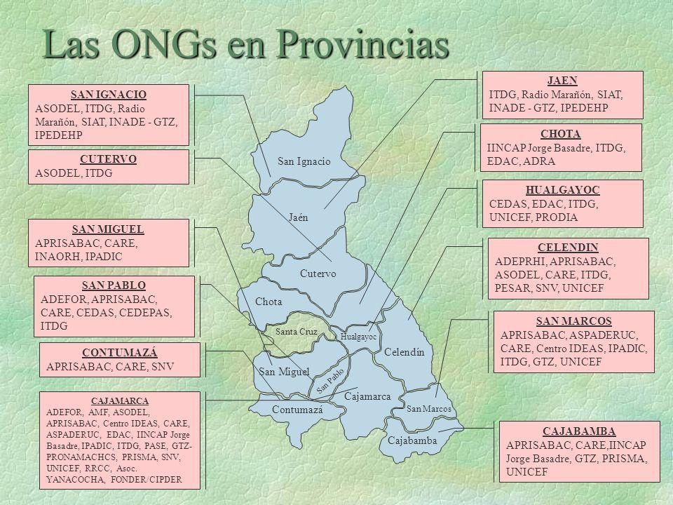 Las ONGs en Provincias JAEN
