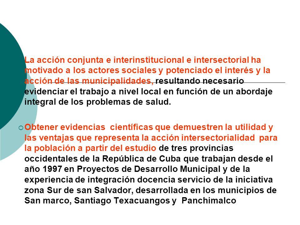 La acción conjunta e interinstitucional e intersectorial ha motivado a los actores sociales y potenciado el interés y la acción de las municipalidades, resultando necesario evidenciar el trabajo a nivel local en función de un abordaje integral de los problemas de salud.