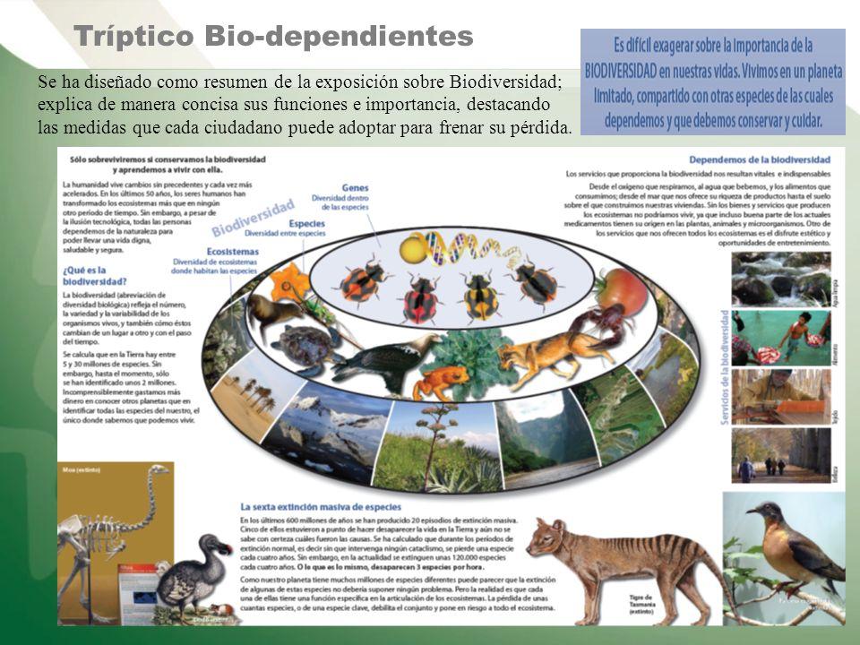 Tríptico Bio-dependientes