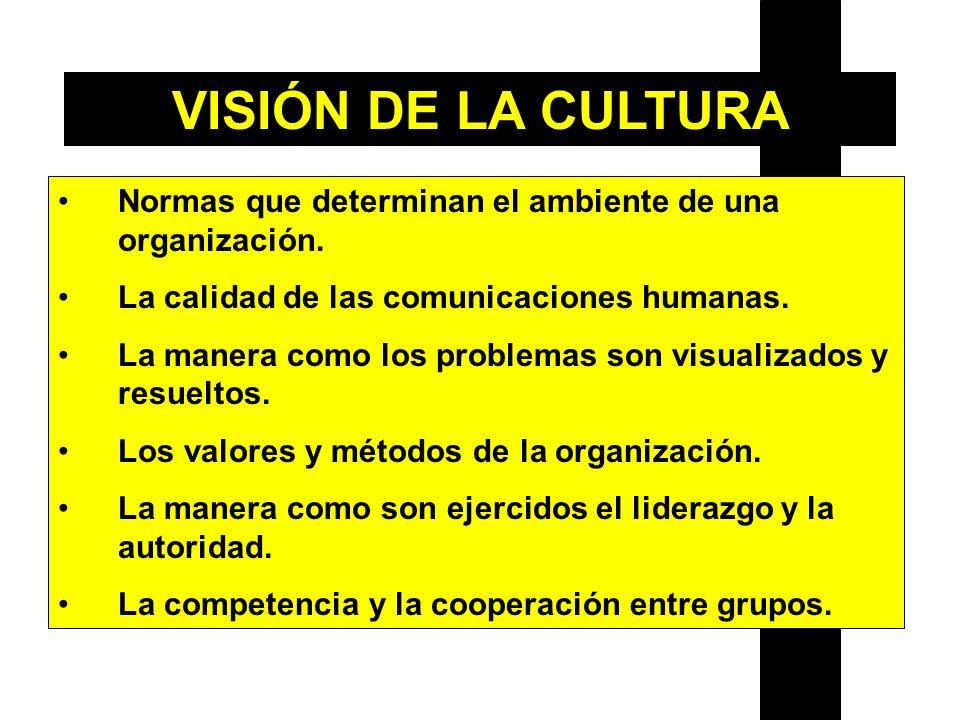 VISIÓN DE LA CULTURA Normas que determinan el ambiente de una organización. La calidad de las comunicaciones humanas.