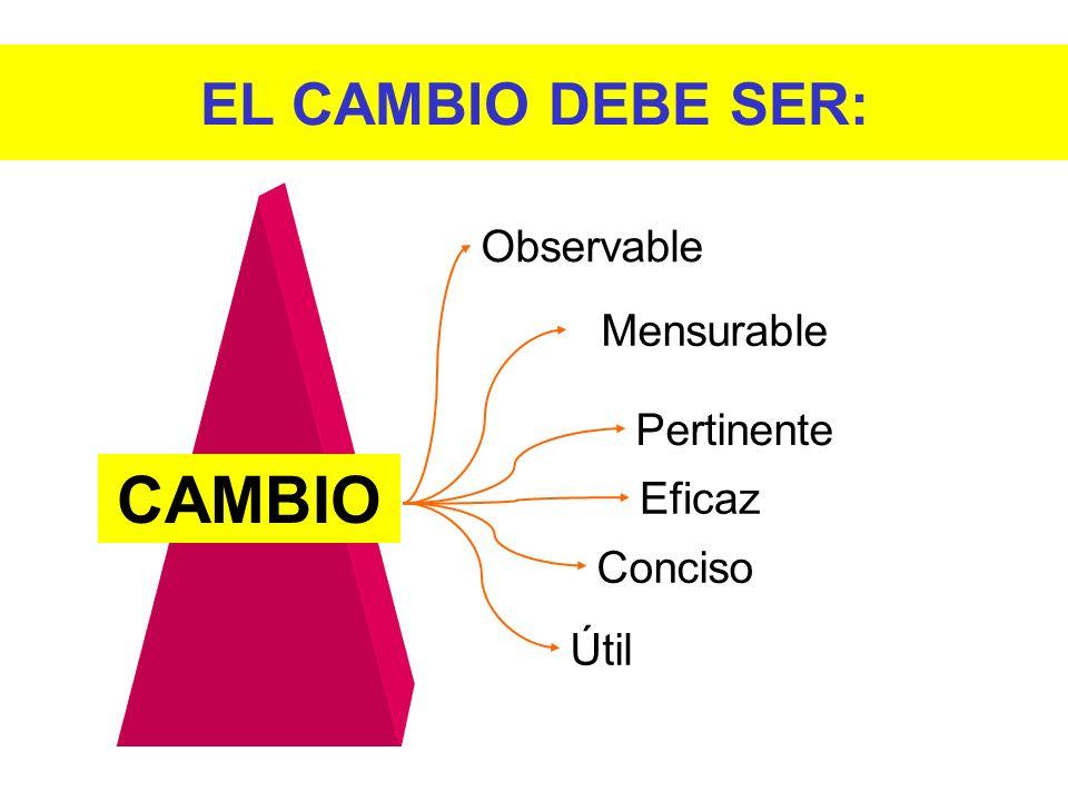 CAMBIO EL CAMBIO DEBE SER: Observable Mensurable Pertinente Eficaz
