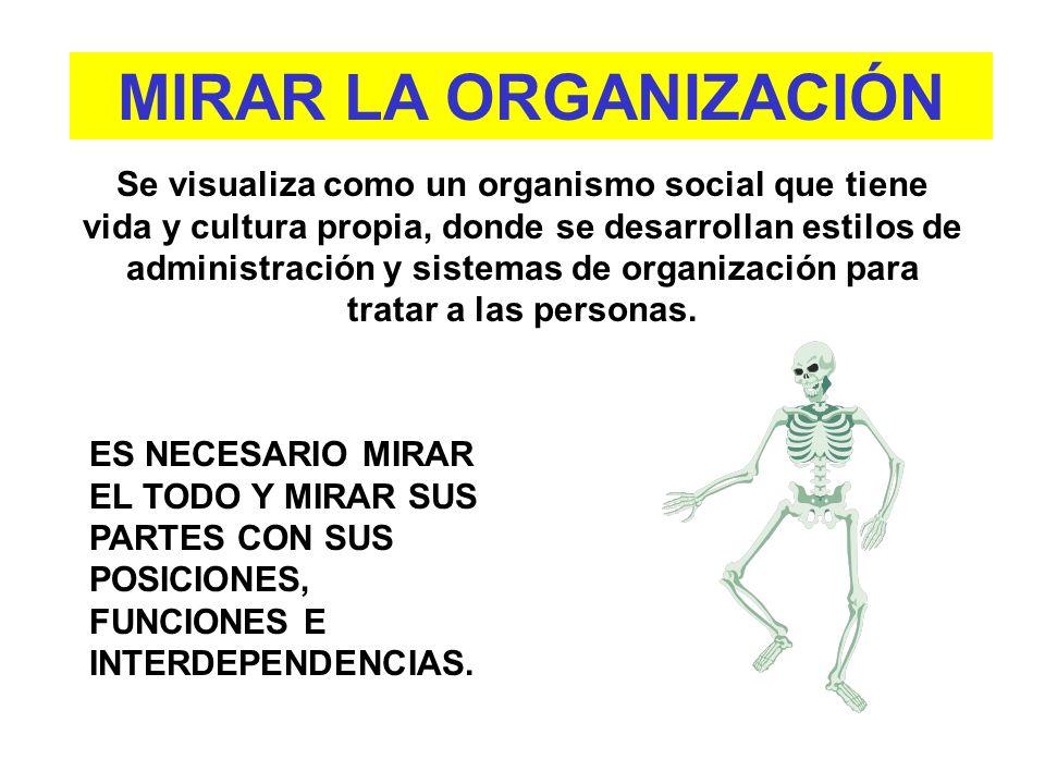 MIRAR LA ORGANIZACIÓN