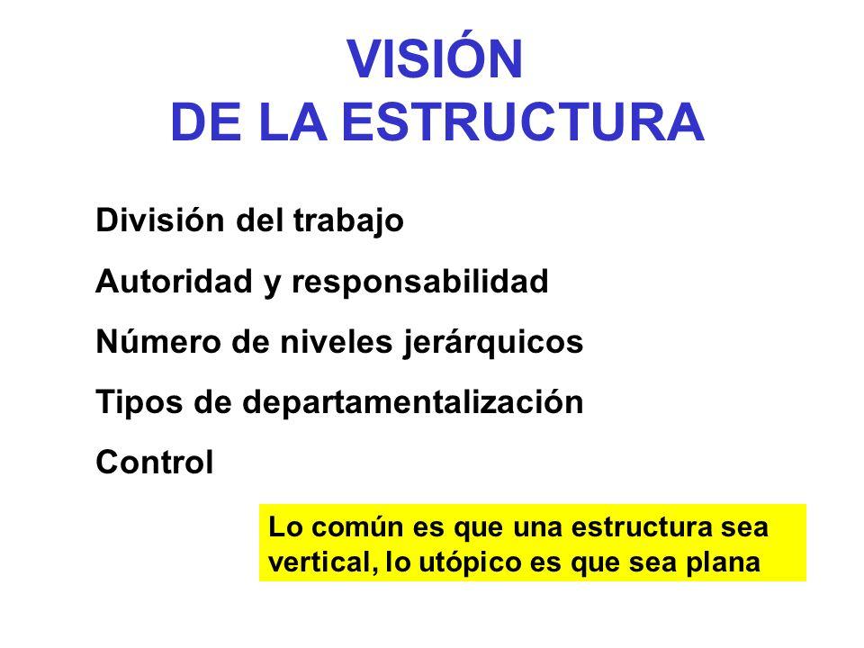 VISIÓN DE LA ESTRUCTURA