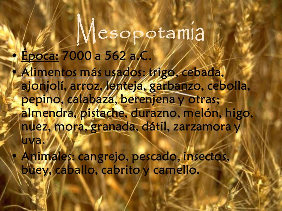 Mesopotamia Época: 7000 a 562 a.C.