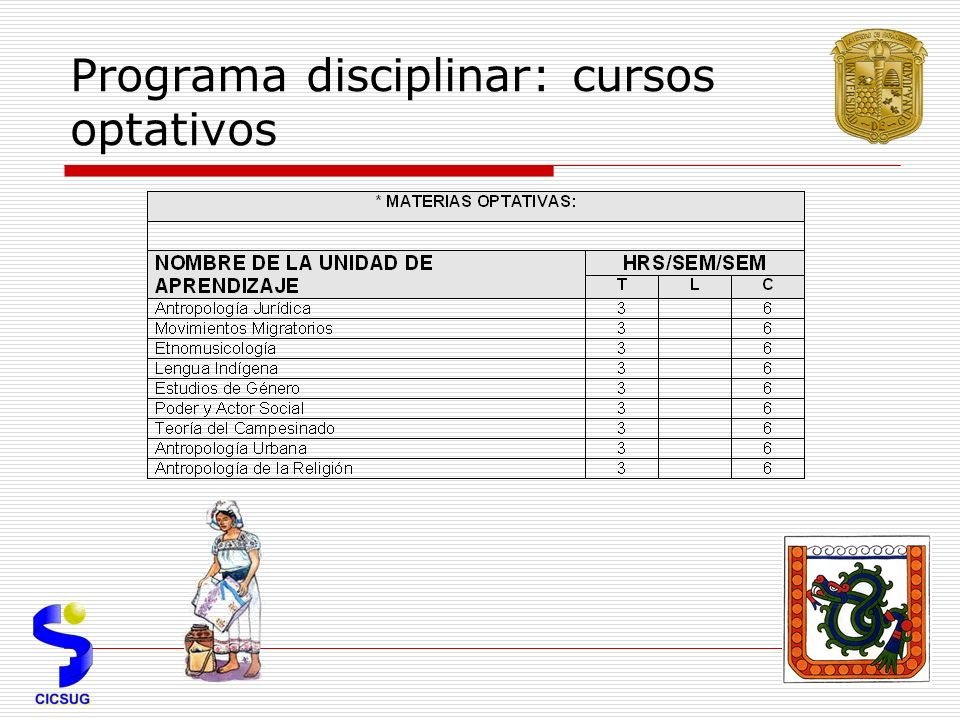 Programa disciplinar: cursos optativos