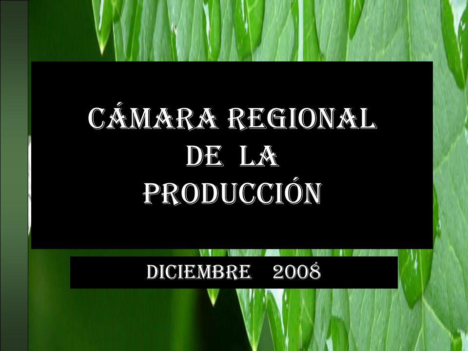 Cámara regional de la producción