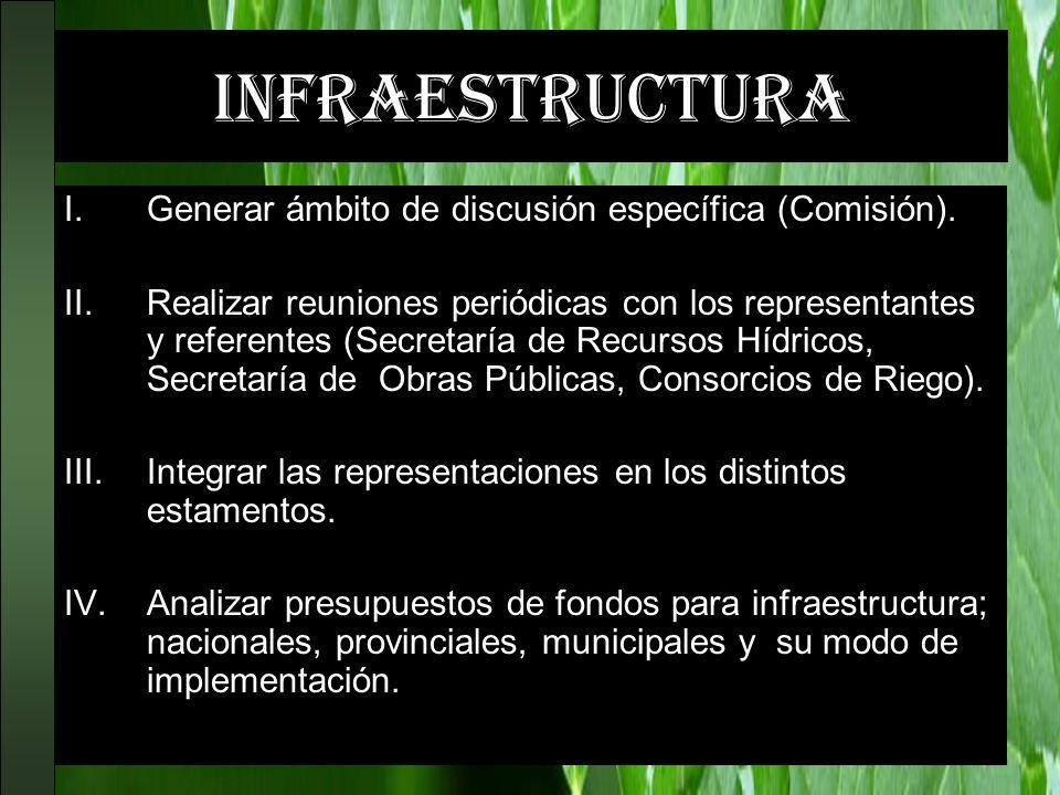 infraestructura Generar ámbito de discusión específica (Comisión).