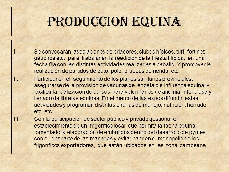 PRODUCCION EQUINA