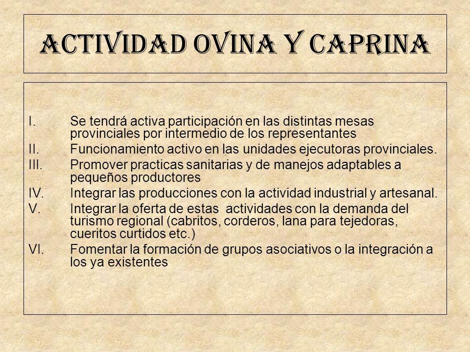 ACTIVIDAD OVINA Y CAPRINA