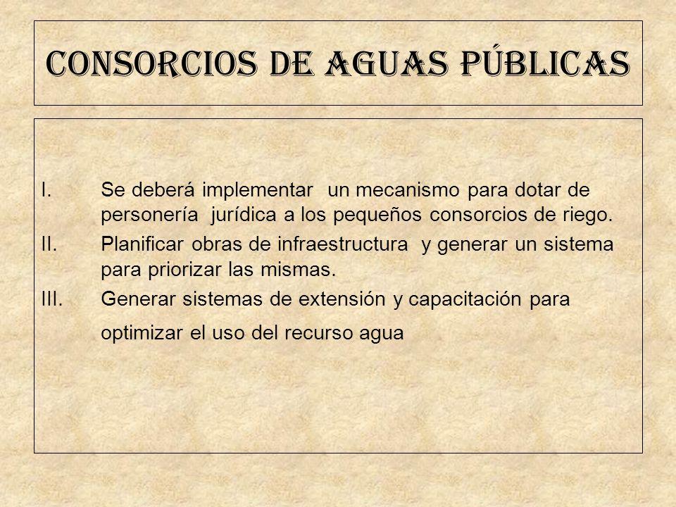 CONSORCIOS DE AGUAS PÚBLICAS