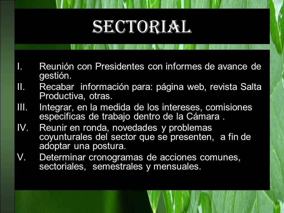 sectorial Reunión con Presidentes con informes de avance de gestión.