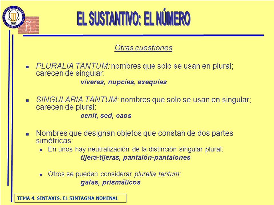 esquema  el sintagma nominal