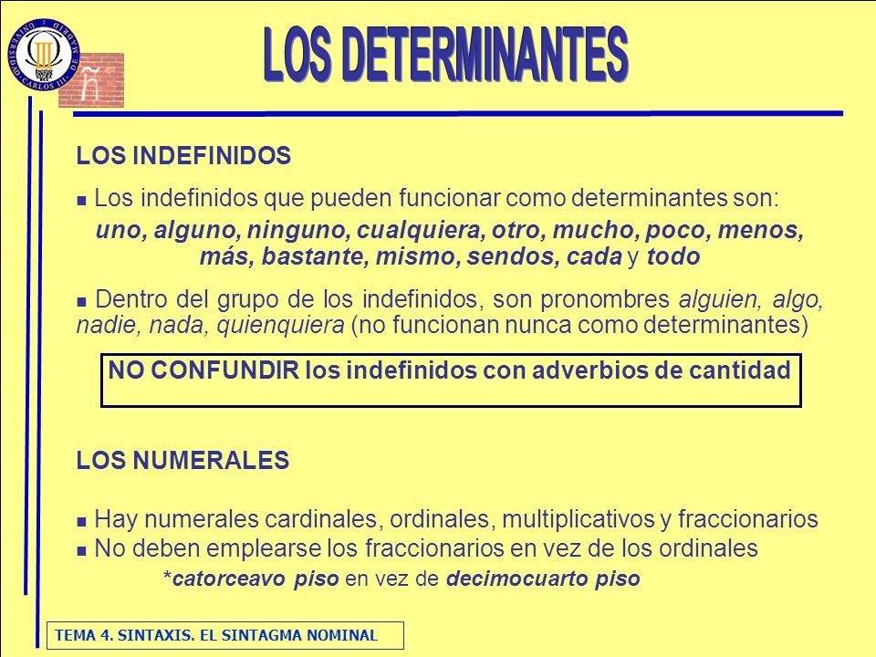 NO CONFUNDIR los indefinidos con adverbios de cantidad