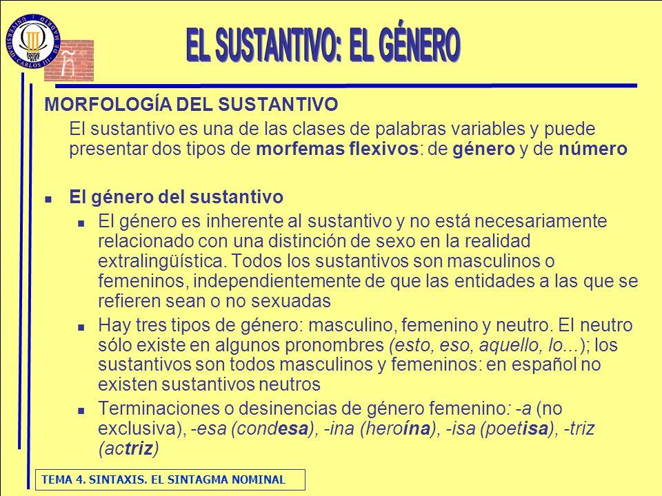EL SUSTANTIVO: EL GÉNERO