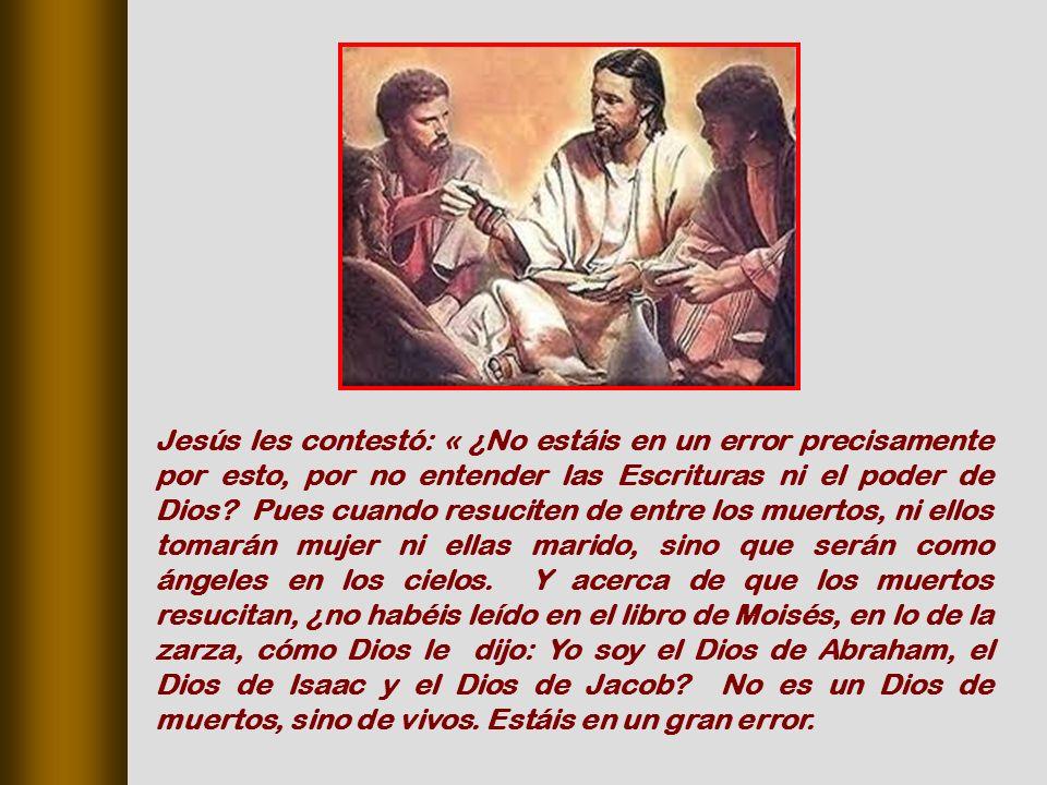 Jesús les contestó: « ¿No estáis en un error precisamente por esto, por no entender las Escrituras ni el poder de Dios.