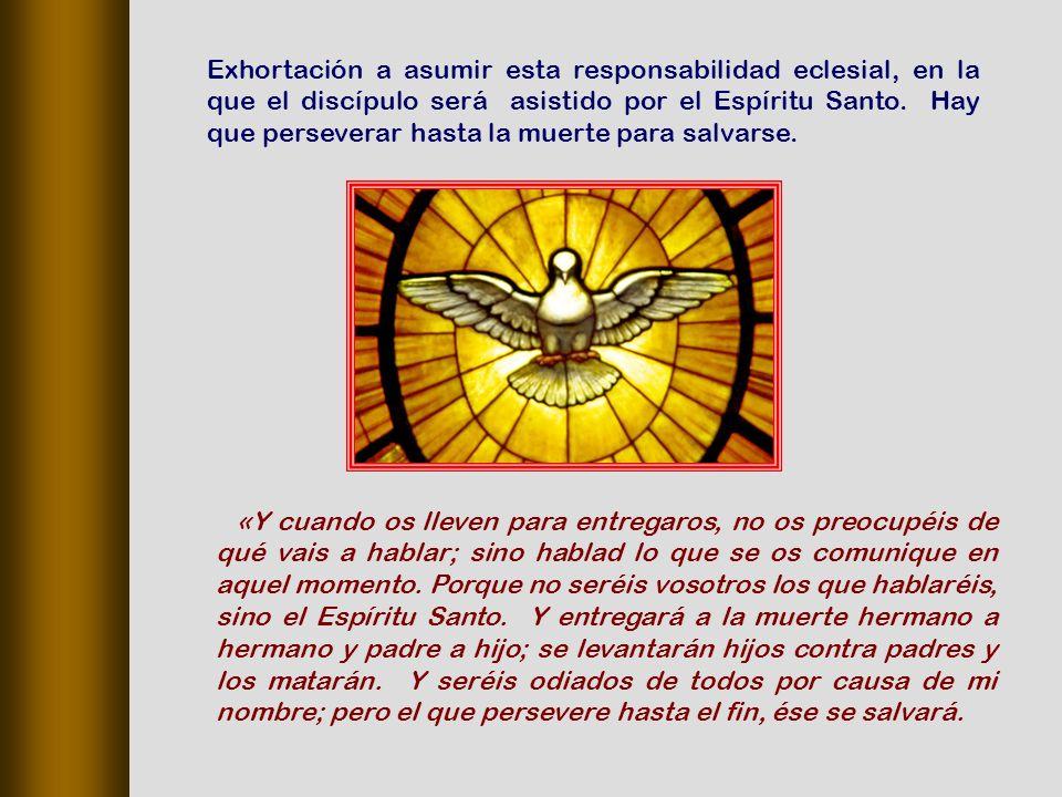 Exhortación a asumir esta responsabilidad eclesial, en la que el discípulo será asistido por el Espíritu Santo. Hay que perseverar hasta la muerte para salvarse.