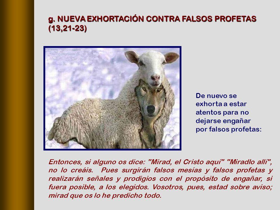 g. NUEVA EXHORTACIÓN CONTRA FALSOS PROFETAS (13,21‑23)