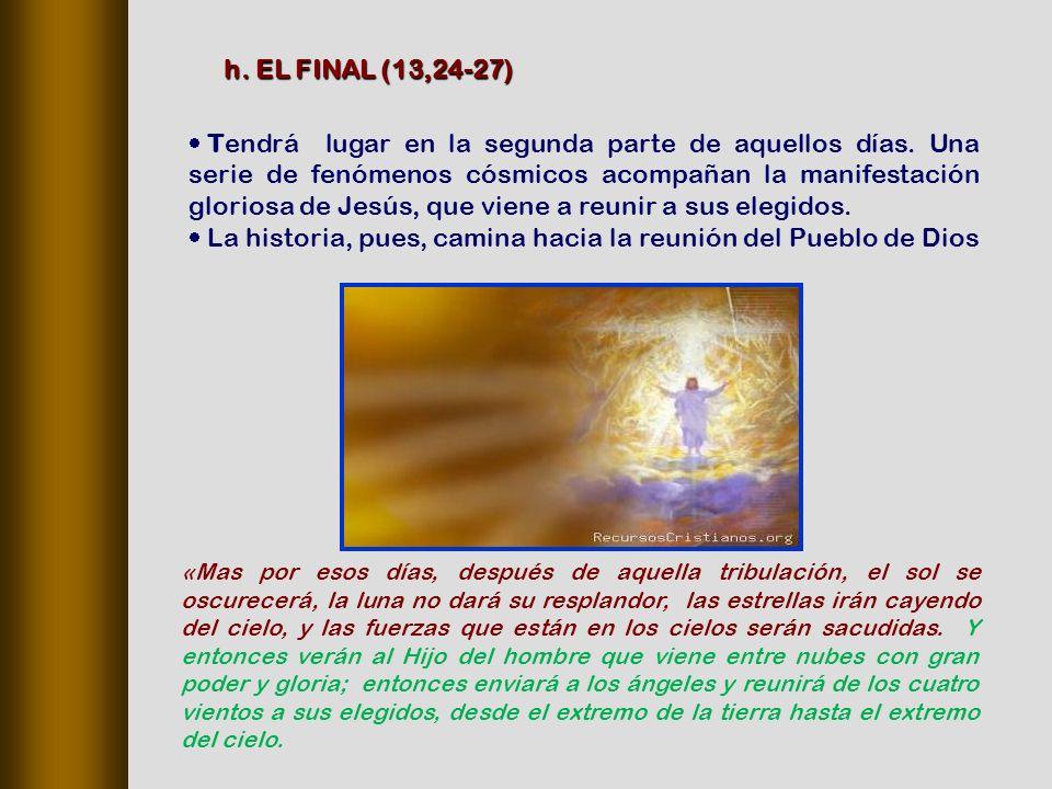 La historia, pues, camina hacia la reunión del Pueblo de Dios