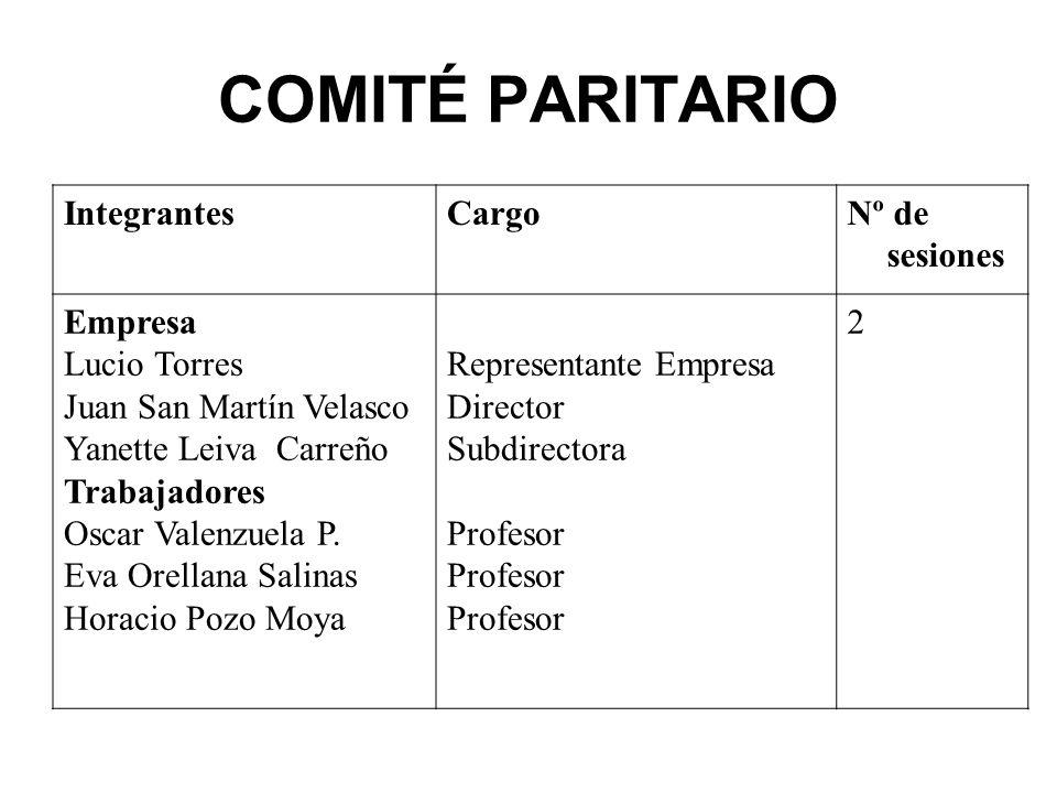 COMITÉ PARITARIO Integrantes Cargo Nº de sesiones Empresa Lucio Torres