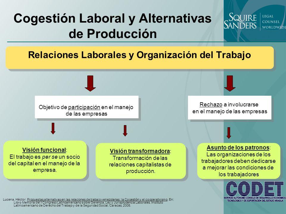 Cogestión Laboral y Alternativas de Producción