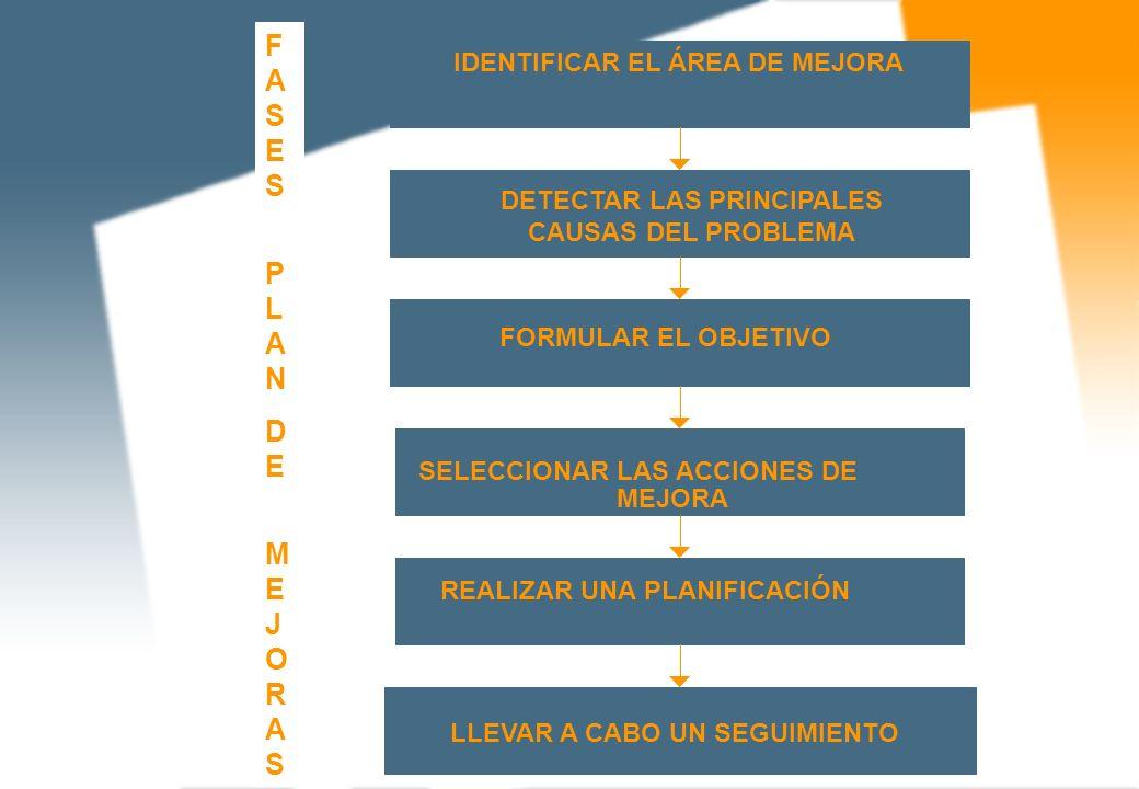 IDENTIFICAR EL ÁREA DE MEJORA DETECTAR LAS PRINCIPALES