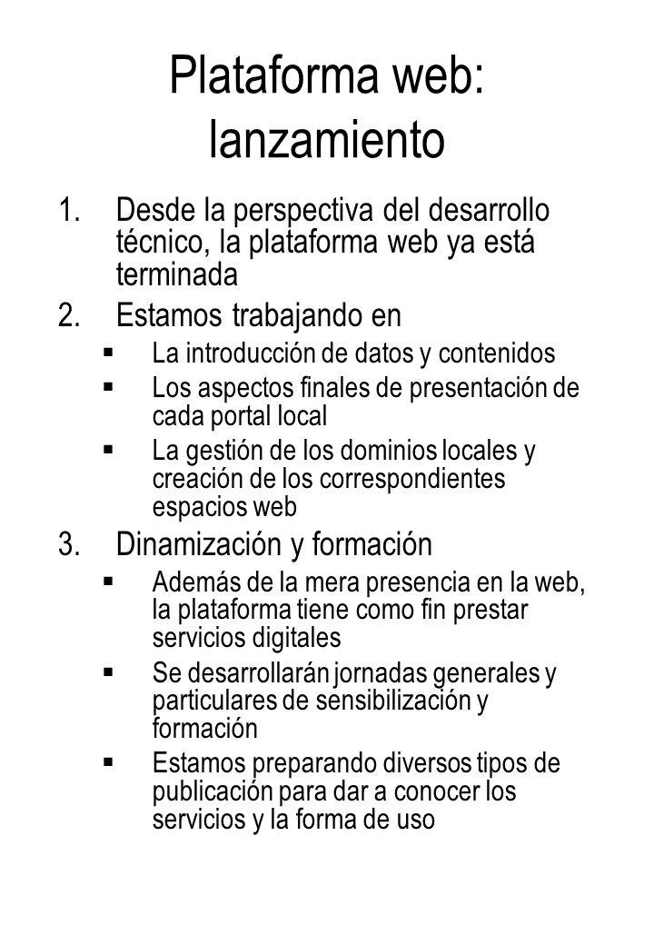 Plataforma web: lanzamiento