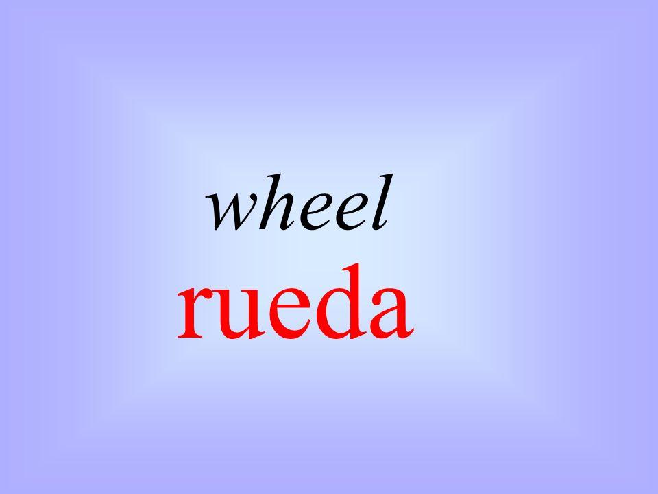 wheel rueda