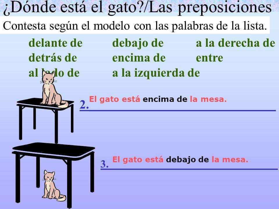 ¿Dónde está el gato /Las preposiciones