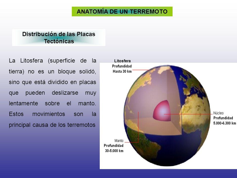 ANATOMÍA DE UN TERREMOTO Distribución de las Placas Tectónicas