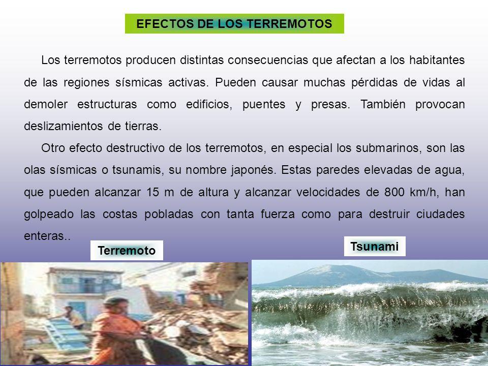 EFECTOS DE LOS TERREMOTOS