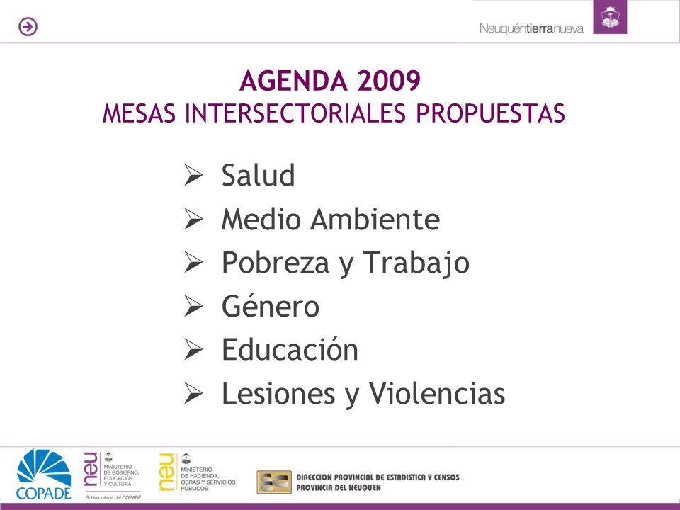 AGENDA 2009 MESAS INTERSECTORIALES PROPUESTAS