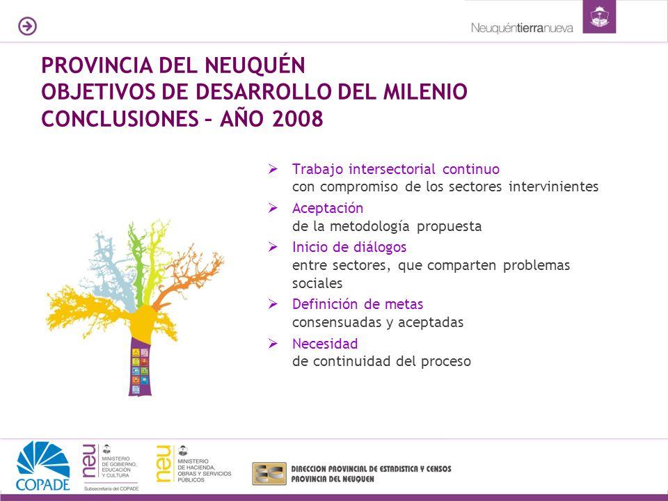 PROVINCIA DEL NEUQUÉN OBJETIVOS DE DESARROLLO DEL MILENIO CONCLUSIONES – AÑO 2008