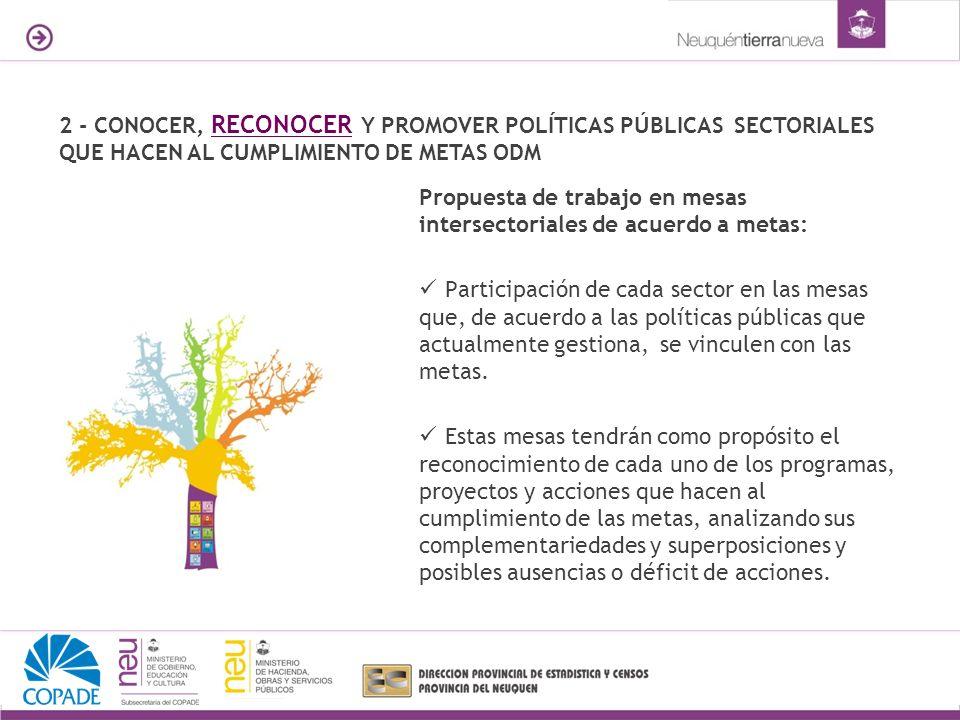 2 - CONOCER, RECONOCER Y PROMOVER POLÍTICAS PÚBLICAS SECTORIALES QUE HACEN AL CUMPLIMIENTO DE METAS ODM