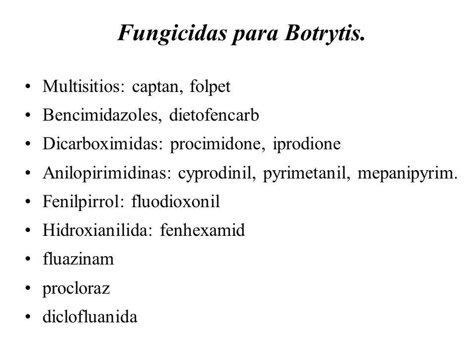 Fungicidas para Botrytis.